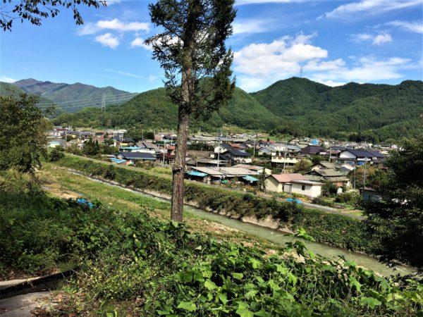 ippaishimizu